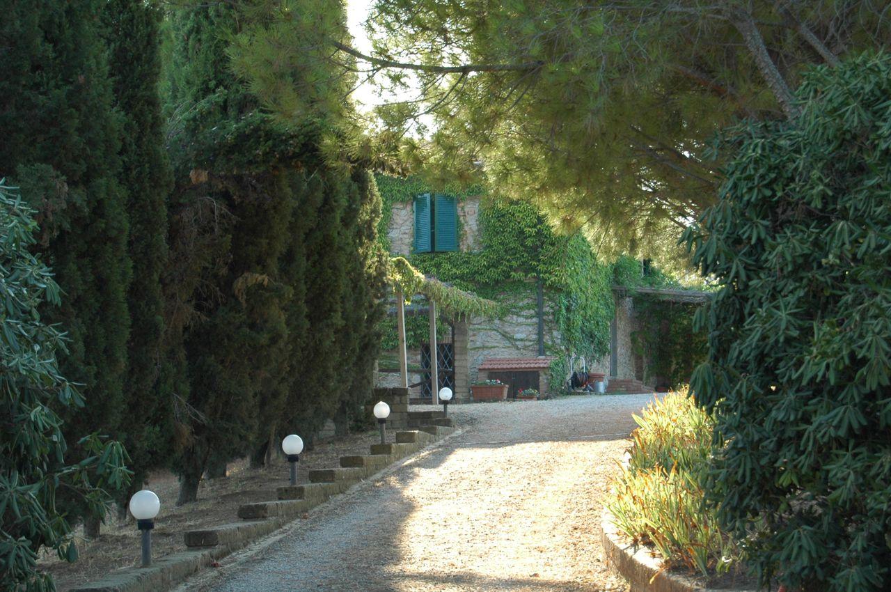 """Die Auffahrt zum Gästehaus """"Podere Poggio Ventoso""""- Foto © Maibritt Olsen"""