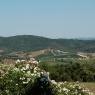 Blick vom Romitorio auf das Weingut 'Rothschild' – Foto © Maibritt Olsen