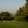 Der Parco Cavallino – Foto © Maibritt Olsen