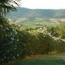 Der Garten des Ferienhauses 'Podere Romitorio' auf dem 'Poggio Ventoso' - Foto © Maibritt Olsen