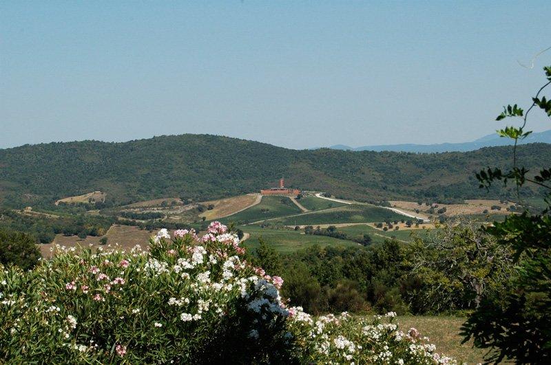"""Blick auf das Weingut """"Rothschild"""" – Foto © Maibritt Olsen"""
